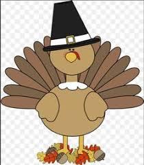 transparent thanksgiving turkey picture pinteres