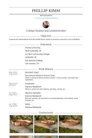 ironworker resume assistant coach resume samples visualcv resume samples database