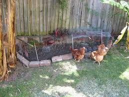 laura rittenhouse u0027s gardening journal keeping track of what u0027s