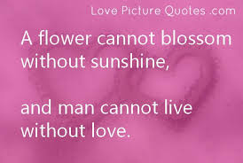 Flower And Love Quotes - love quotes with images u2013 sms latestsms in