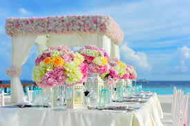 yellow and pink petaled flowers on table near ocean under blue sky