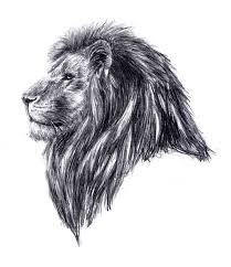 25 lion tattoo ideas lion tattoo 2b