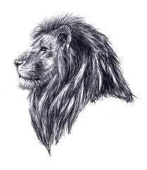 25 beautiful leo lion tattoos ideas on pinterest lion tattoo