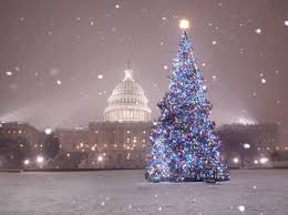 christmas tree with snow capital weather the national christmas tree with snow