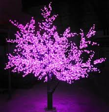 display purple lights in october lacasa center
