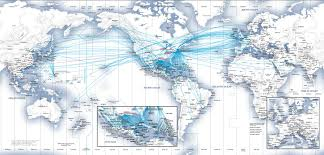 Iberia Route Map by Pointsaway U2013 Charting Your Path To Anywhere