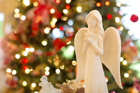 christmas tree flower lights free images flower petal celebration symbol holiday religion