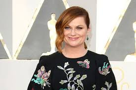 animated comedy from amy poehler in the works at fox