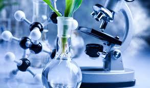 bioplastic research paper biome bioplastics builds biosciences skill base biome