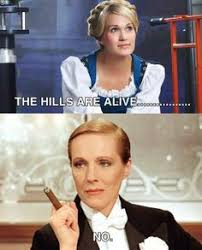 Sound Of Music Meme - 106 best the sound of music images on pinterest julie andrews