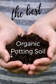 pro mix review the best organic potting soil for vegetable gardening