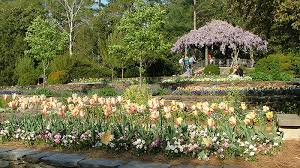 Raleigh Botanical Garden 10 Top Raleigh Durham Attractions Forbes Travel Guide Stories