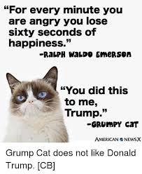 Angry Cat Memes - 25 best memes about trump grumpy cat trump grumpy cat memes
