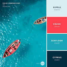 create room color palette build your brand 20 unique and memorable color palettes to