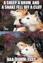 Bad Dog Meme - best of 22 bad dog meme testing testing