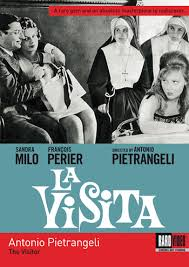 the visitor 1963 dvd review a nuanced look at cinema