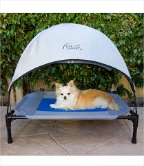 Pet Canopy Bed Bed With Canopy Design Vine Dine King Bed Make A Bed
