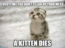 Mess Meme - everytime you don t clean up your mess sad cat meme on memegen