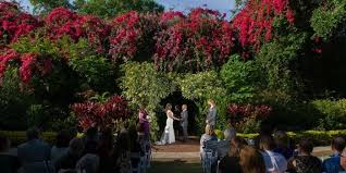 wedding venues st petersburg fl sunken gardens st pete wedding seeker