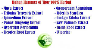 hammer of thor increase penis size powerful erection wolftoyz my
