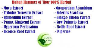 hammer of thor increase penis size powerful erection wolftoyz my