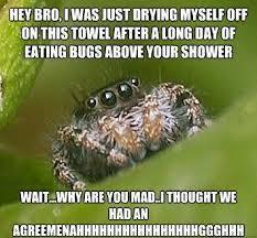 Spider Meme Misunderstood Spider Meme - misunderstood spider memes album on imgur