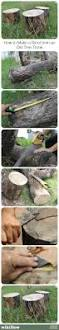 How To Build A Stump by 35 Best Felled Tree Craft Images On Pinterest Tree Crafts