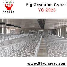 Sow Gestation Table Swine Pens Sow Pen Pork Farm Construction Crates To Gestation Sow