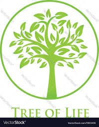 Tree Of Life by Symbol Of The Tree Of Life Royalty Free Vector Image