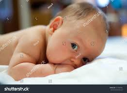 two month old baby laying on stock photo 213763492 shutterstock