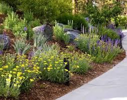 67 best backyard redo images on pinterest backyard ideas garden