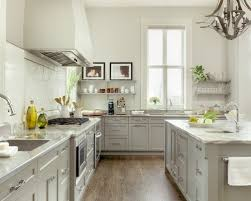 Light Gray Kitchen Cabinets LightandwiregalleryCom - Light colored kitchen cabinets