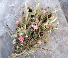 Dried Flower Arrangements Dried Flower Arrangement Ebay