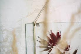 diy wandgestaltung diy wandgestaltung blätter im transparenten rahmen