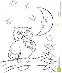 owl coloring page stock vector image 40037219