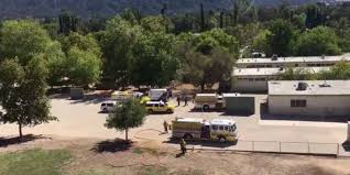 5 injured by fallen tree branch at ojai