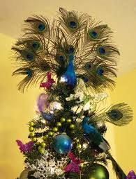 proud peacock christmas peacock christmas tree peacock