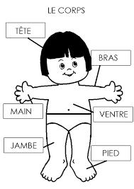 136 best le corps en maternelle images on pinterest montessori