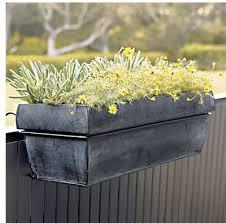 heavy petal window box round up