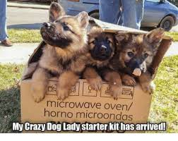 Crazy Dog Lady Meme - microwave oven e horno microondas my crazy dog lady starter