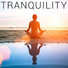 tranquility tranquility howtobasic