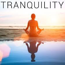 tranquility howtobasic