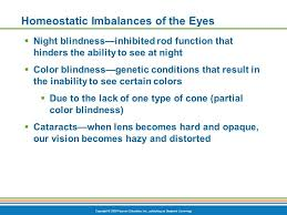 Is Night Blindness Hereditary Special Senses Ppt Download