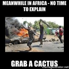 No Time To Explain Meme - meanwhile in africa no time to explain grab a cactus swinging