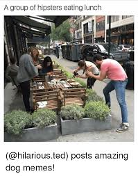 Hipster Dog Meme - a group of hipsters eating lunch posts amazing dog memes funny