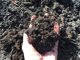 5 organic practices for healthy garden soil u2022 my turkey hollow