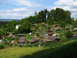 allotment gardening wikipedia