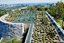los angeles native plants 15 free things to do in los angeles enjoy la on a budget