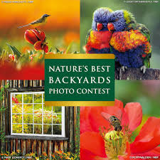 2017 nature u0027s best backyards photo contest photo contest insider