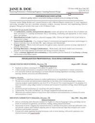 professional it cv template download